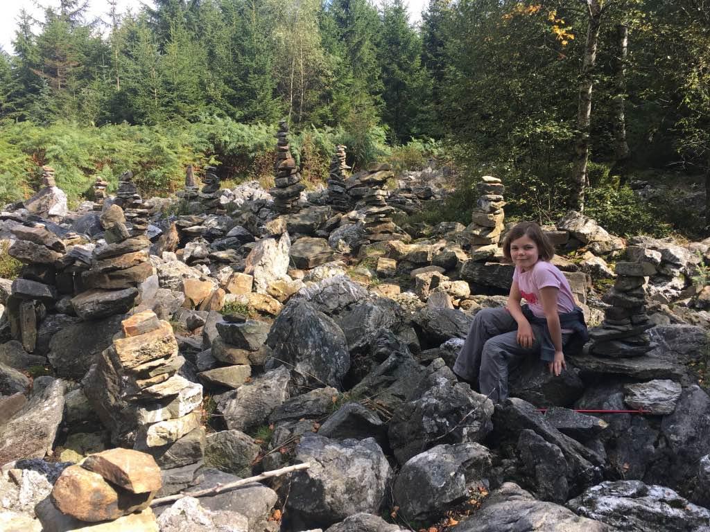 Uitrusten een veld vol met stenen