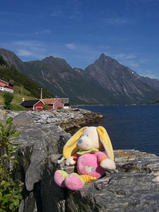 Ook Haas genoot van het prachtige Noorse landschap (2008)