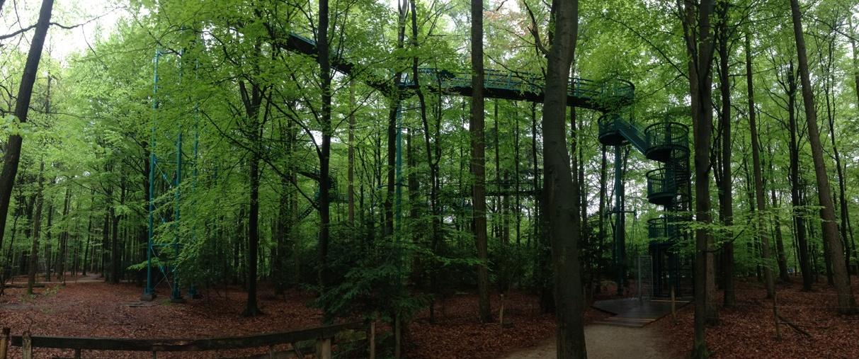 vakantie met kinderen, kids er op uit, Drenthe, korte wandelingen, Gieten, Borger, boomkroonpad, wandelen met kinderen
