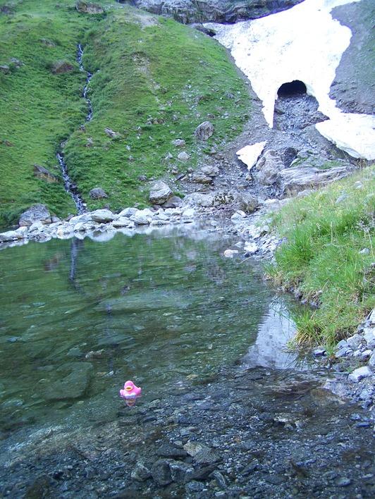 Rubbereendje mocht zwemmen in Noorwegen (2008)