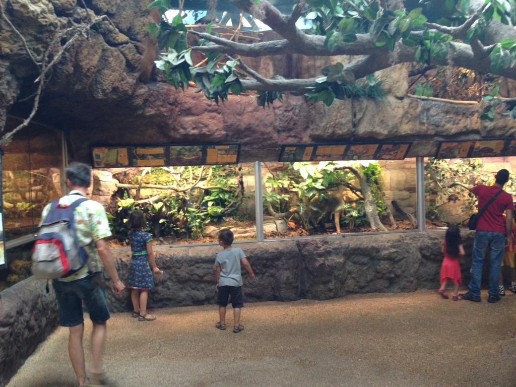 Heel veel terrariums in het aquarium-gedeelte.