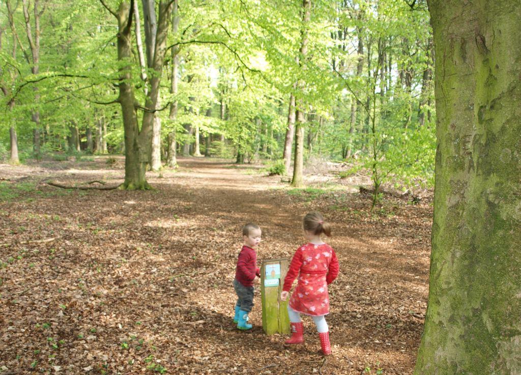 Leuke paaltjes om te volgen, erg handig tijdens het wandelen met kinderen.