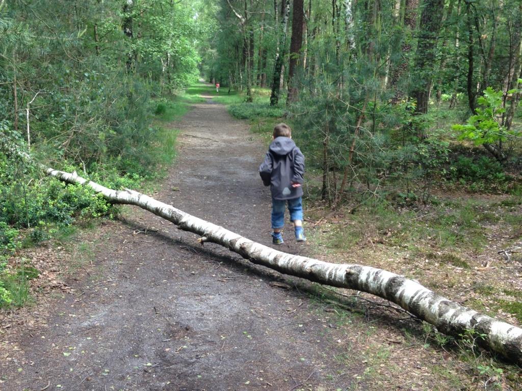 Soms kom je natuurlijke obstakels tegen. Klein genoeg om een kinderwagen overheen te tillen en groot genoeg om er overheen te springen.