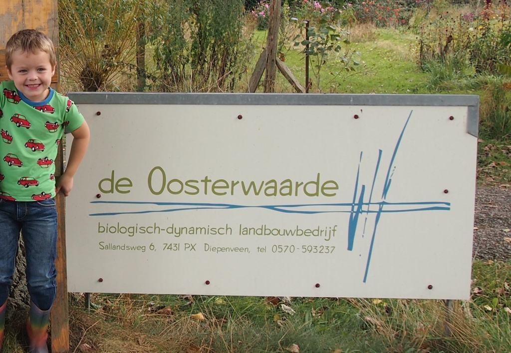 Bij de Oosterwaarde: eens kijken waar onze wekelijkse groente vandaan komt.
