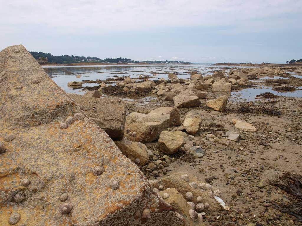 Het opkomende water haalt ons langzaam in....