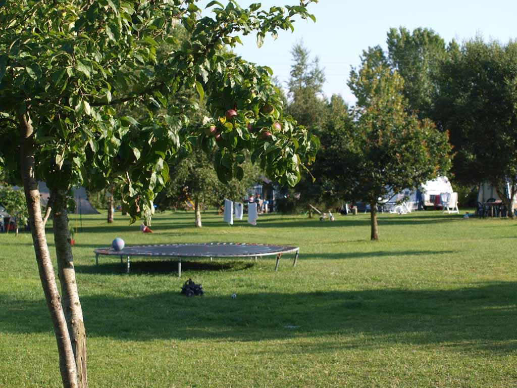 Met 8 kampeerplekken blijft er genoeg ruimte over om te spelen.