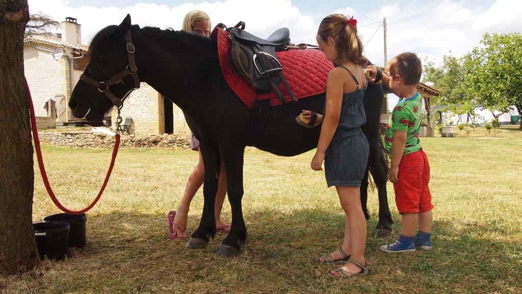 De pony borstelen en daarna een rondje over de camping rijden.