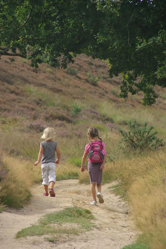 Wandelend met de kinderen op de Posbank.
