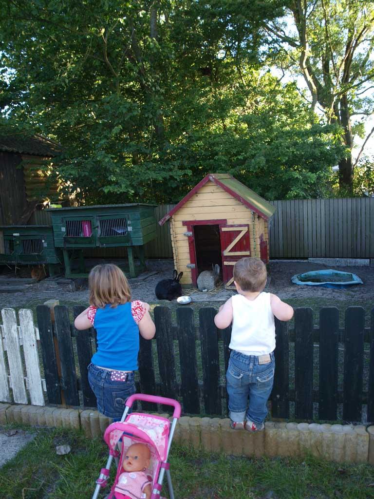 Een camping met dieren doet het altijd goed bij kinderen.