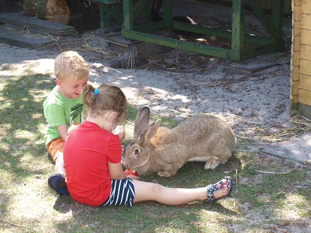 Maureen en Mika voeren een appel aan het konijn. Wat een heerlijk campingleven!