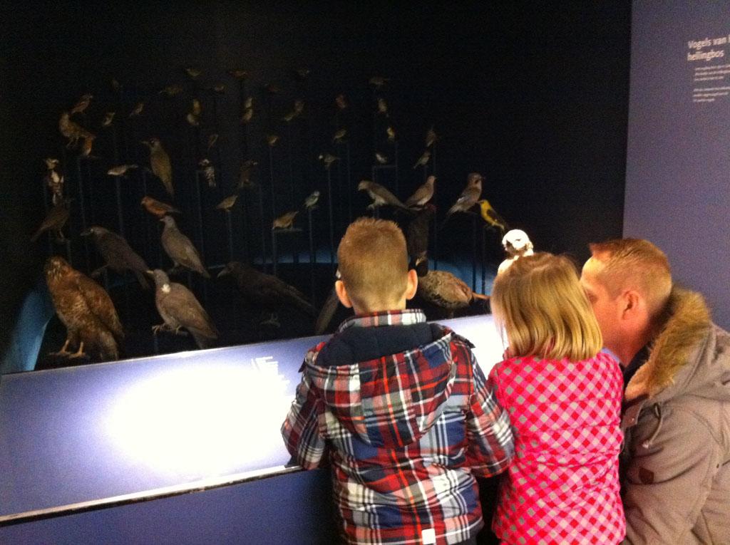 Vogels spotten op interactieve wijze.