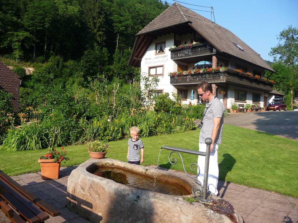 Heerlijk genieten tijdens een vakantie in het Zwarte Woud met kinderen bij de Hoferpeterhof.
