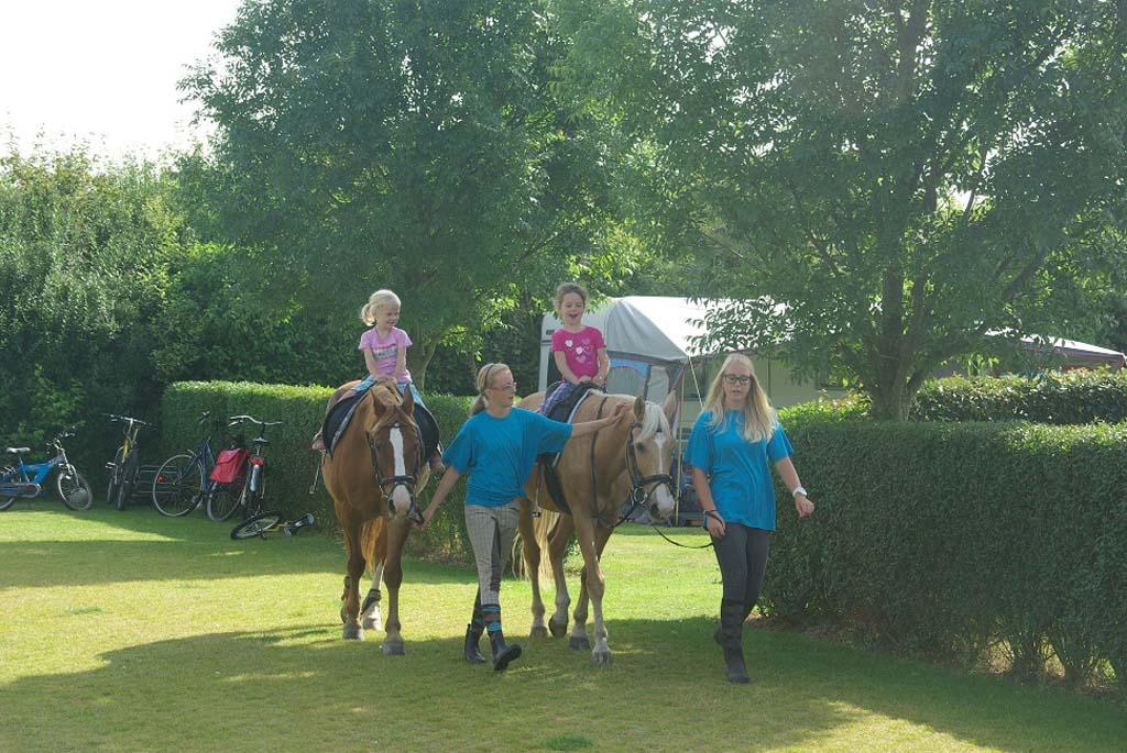 Paardrijden op minicamping De Visser.