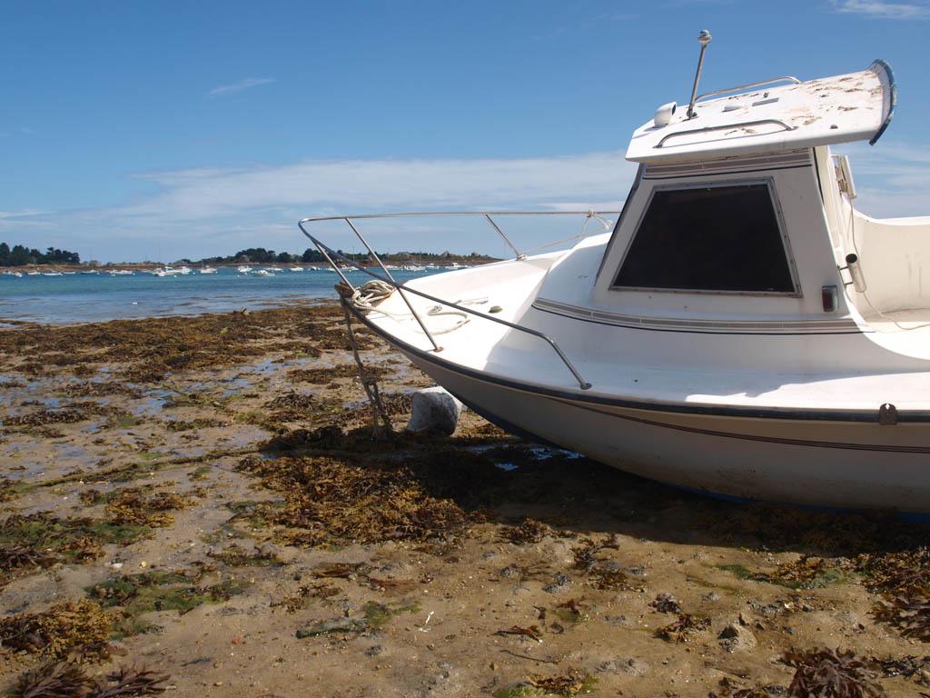 Maar niet op alle bootjes mochten ze van ons. We checkten vooraf of het geen kwaad kon.