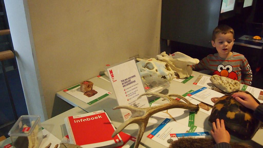 Fossielen en botten voelen
