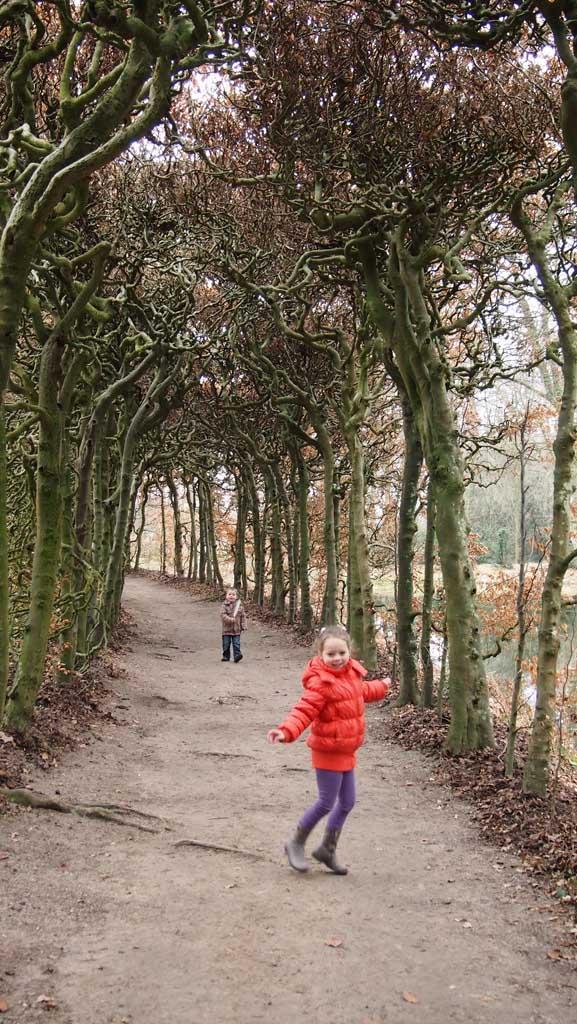 Leuk: onder een boog van bomen door lopen.