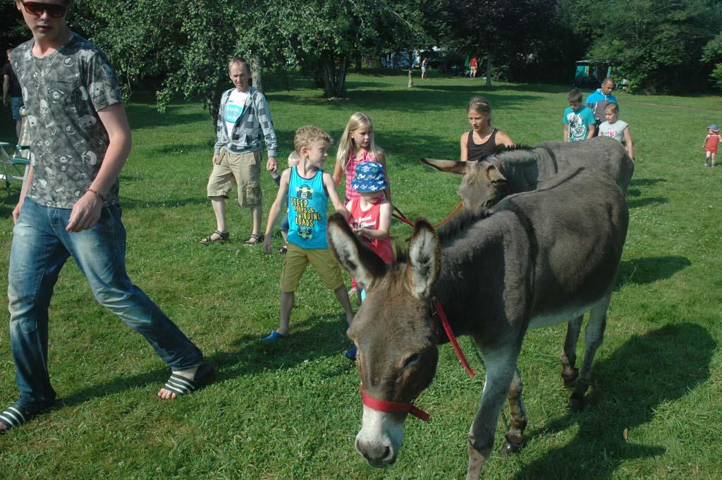 De ezel van de camping. Alle kinderen mochten helpen met verzorgen.