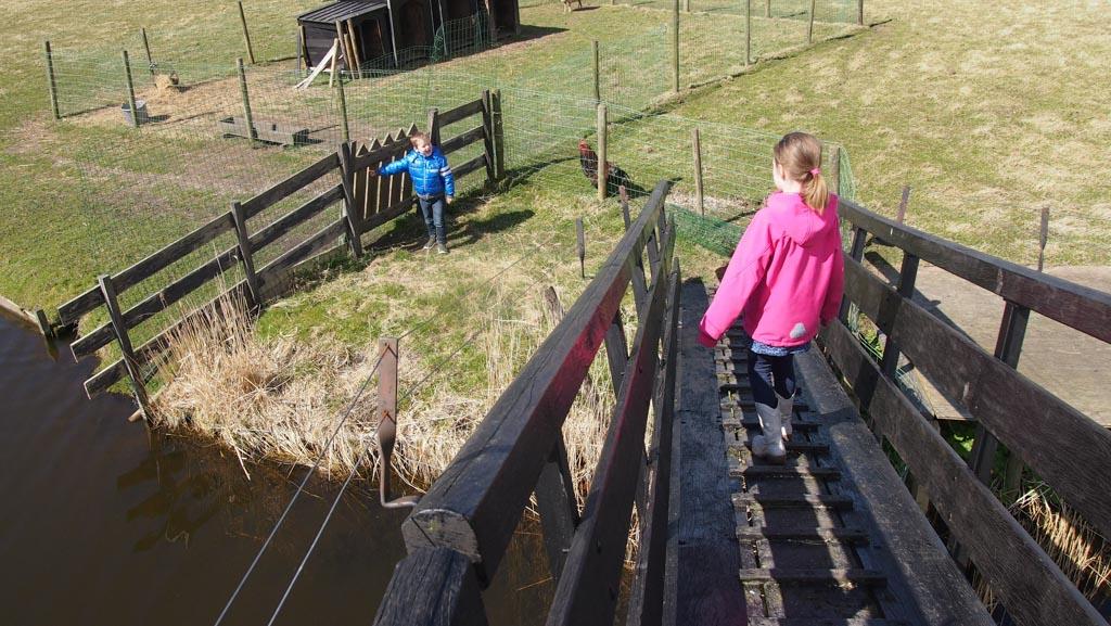 Via een bruggetje kom je bij de dieren.