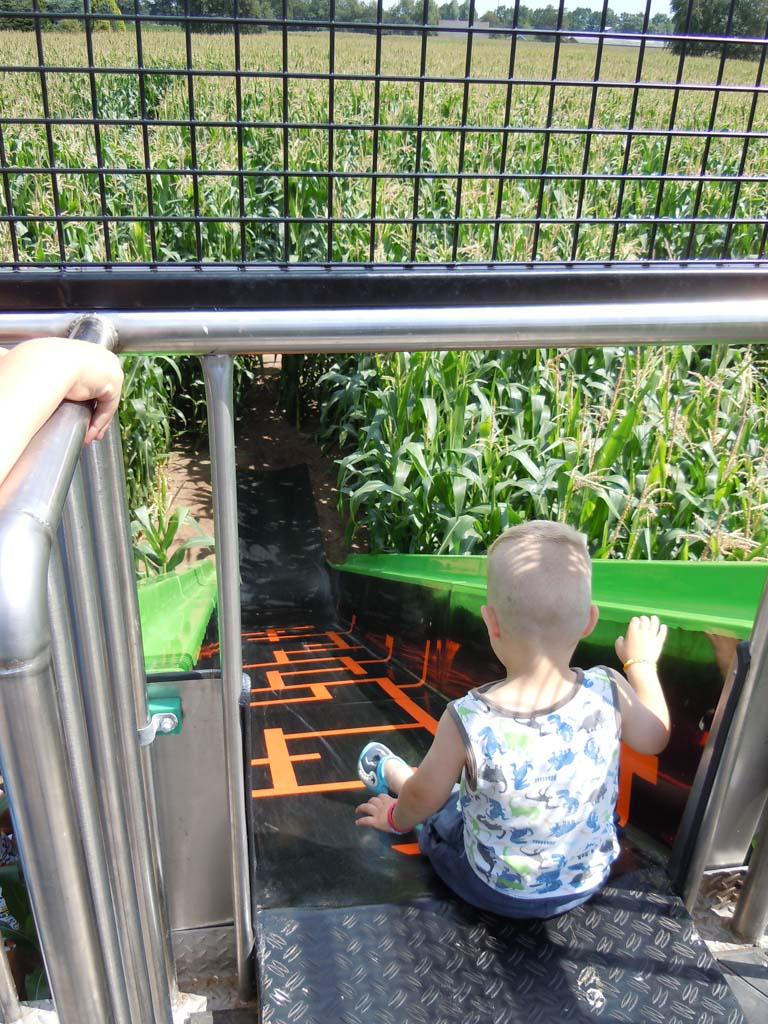 Heerlijk spelen in het Maïsdoolhof.