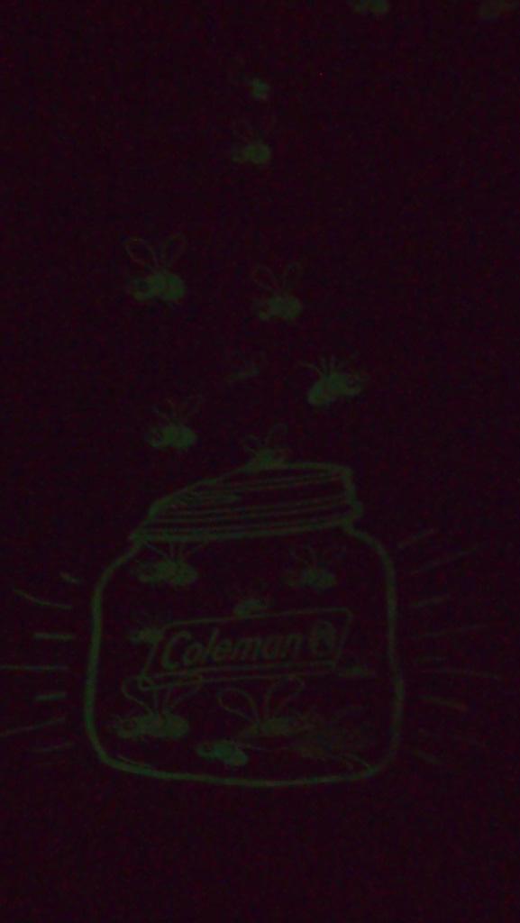 'Glow in the Dark' vastleggen met een camera valt niet mee, maar als het goed is kunnen jullie de gloeiende bijtjes wel zien.