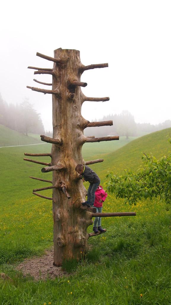 Favoriet bij Maureen en Camiel: klimmen in de boom.