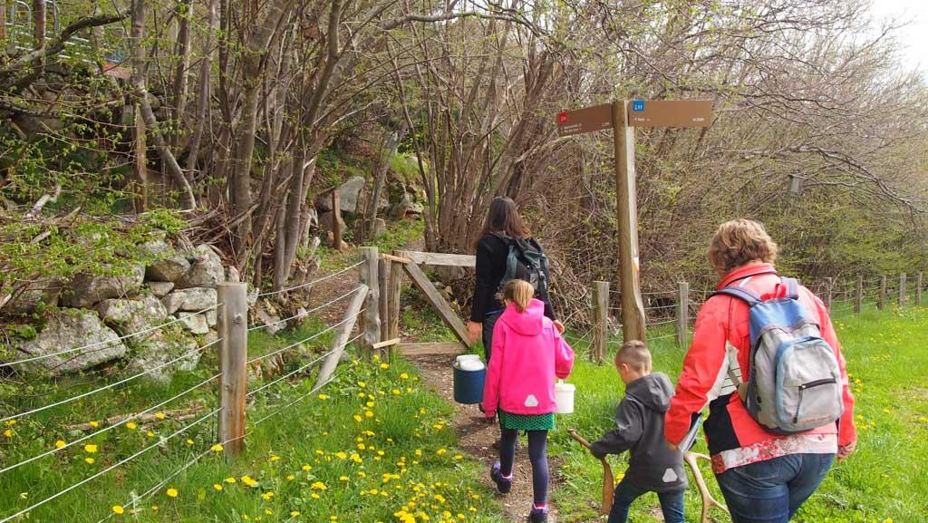 Op weg naar het Wildlife Center... we zien alleen bos!