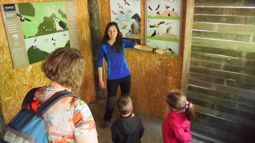 We krijgen uitleg over het fokprogamma van de gieren.