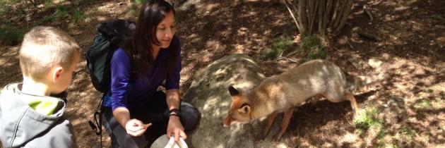 Catalonie: MonNatura Pirineus Wildlife Center