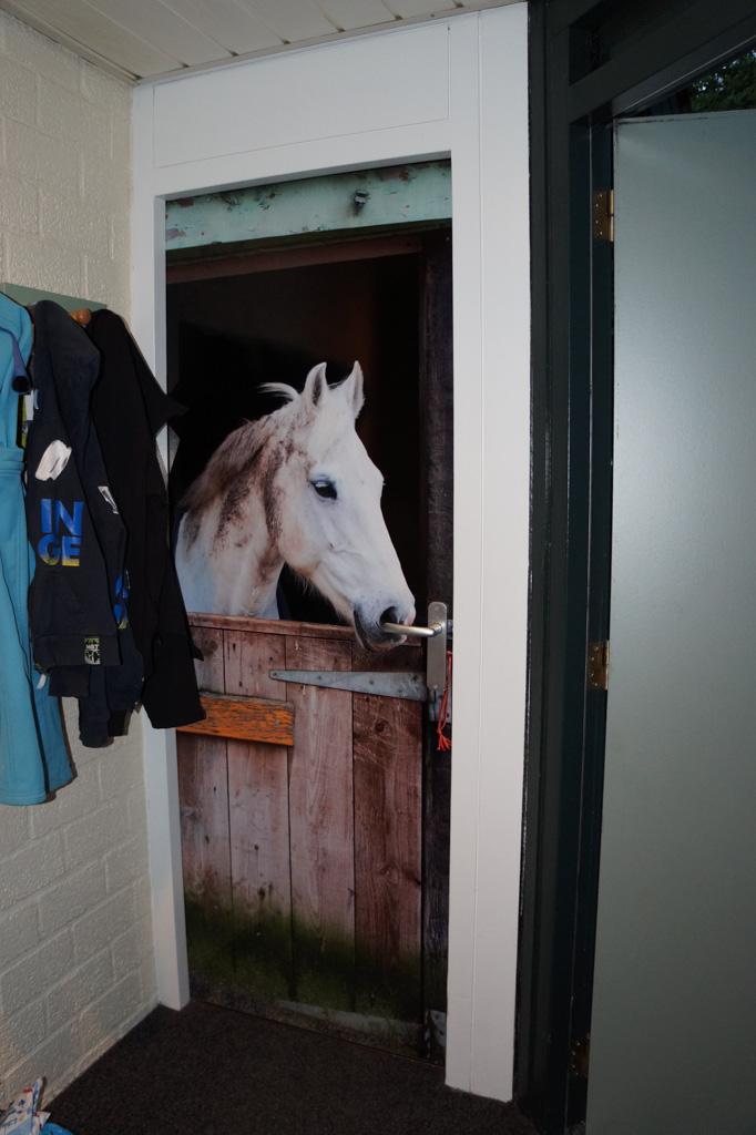 De cottage is ook in pony-sfeer en dat valt direct in de smaak.