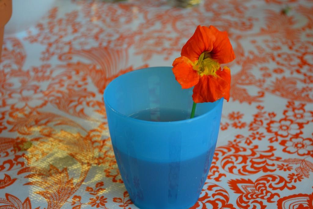 Drinken met een eetbare bloem er in!
