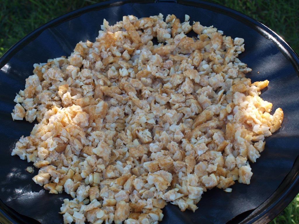 Lekker en makkelijk om te koken op de camping: rosti met geitenkaas.