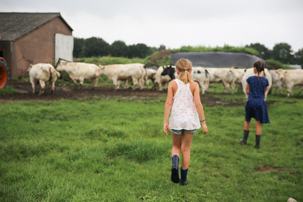 Kinderen zijn met weinig tevreden en vermaken zich heerlijk op een boerderij.