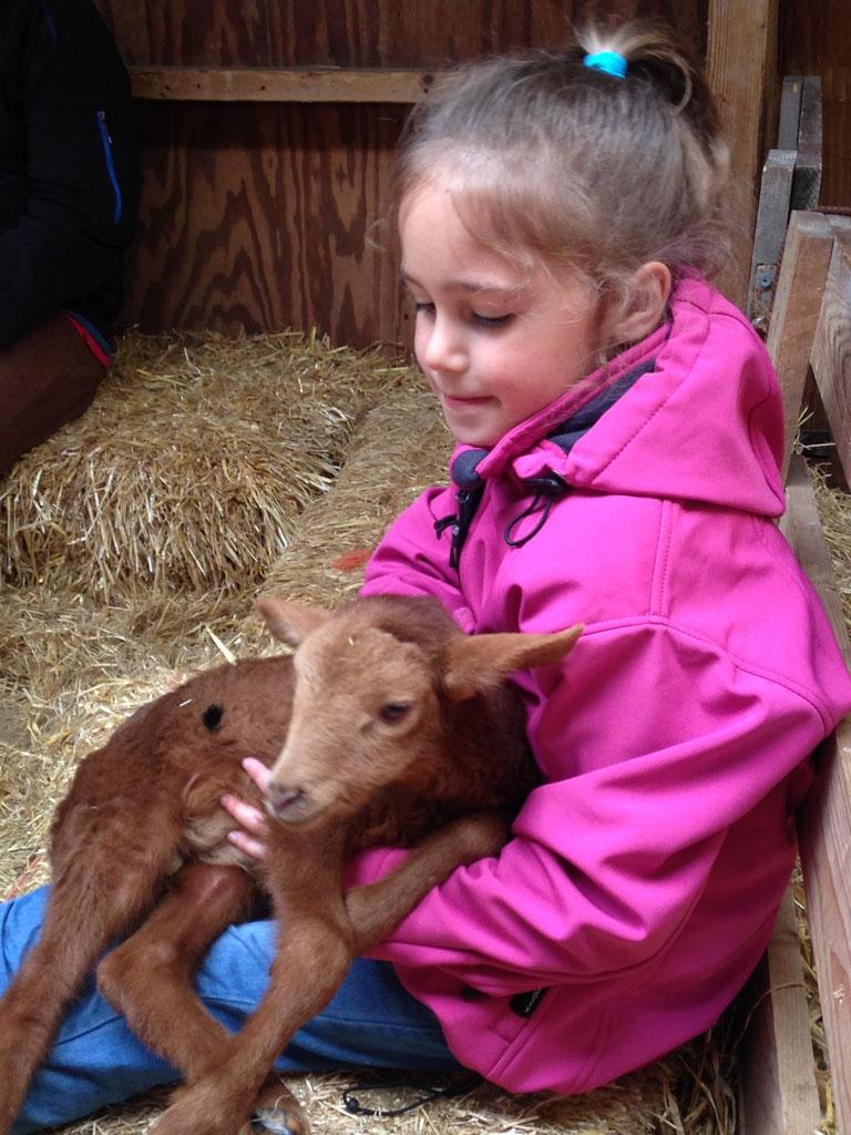 De meiden vinden het knuffelen met de lammetjes geweldig.