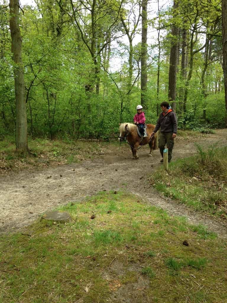 Mike loopt met het paardje van Jeli mee.