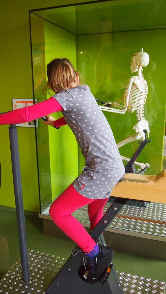 Ontdekken wat je botten doen als je fietst.