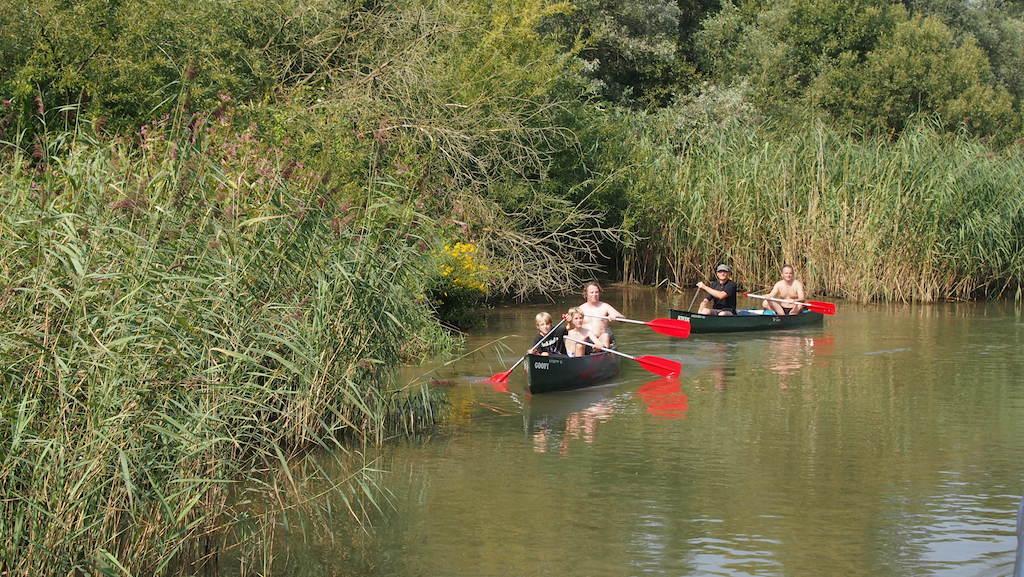 Kanoen in de Biesbosch, dat lijkt ons leuk voor de volgende keer.