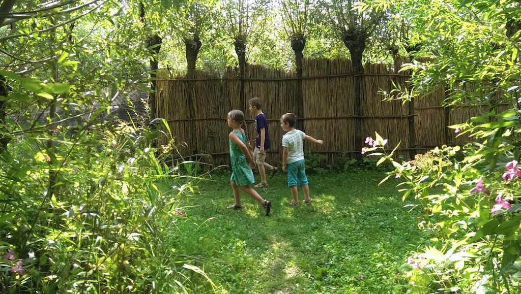 Het lukt ons om de eendenkooi van wilgentenen te vinden.