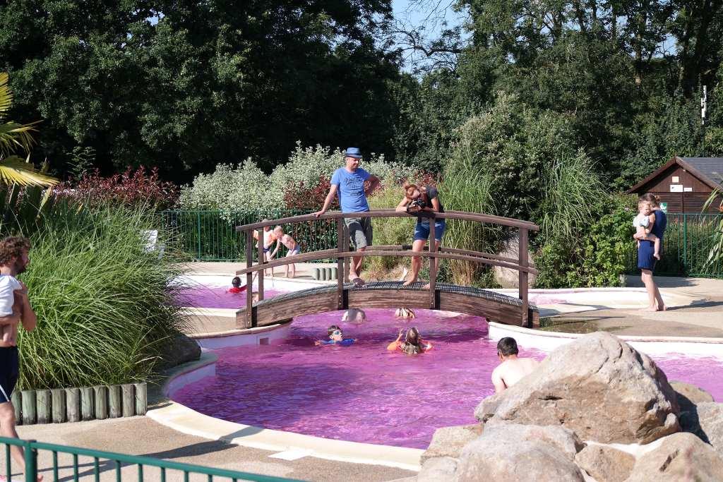 Het zwembad op de camping was een dag voorzien van roze water.