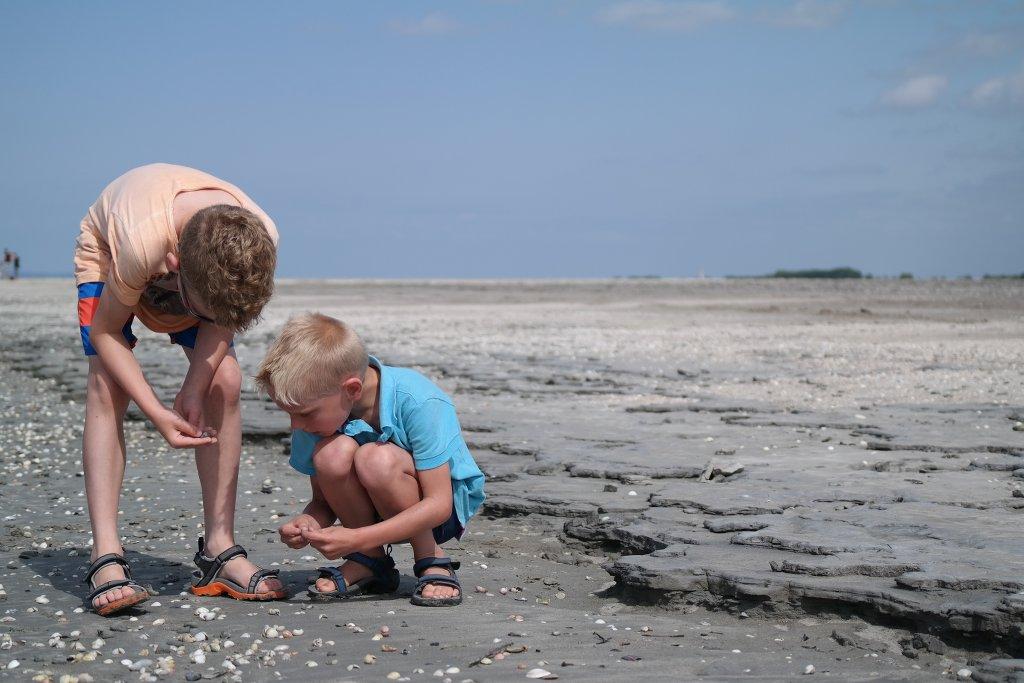 Schelpen zoeken op het strand.