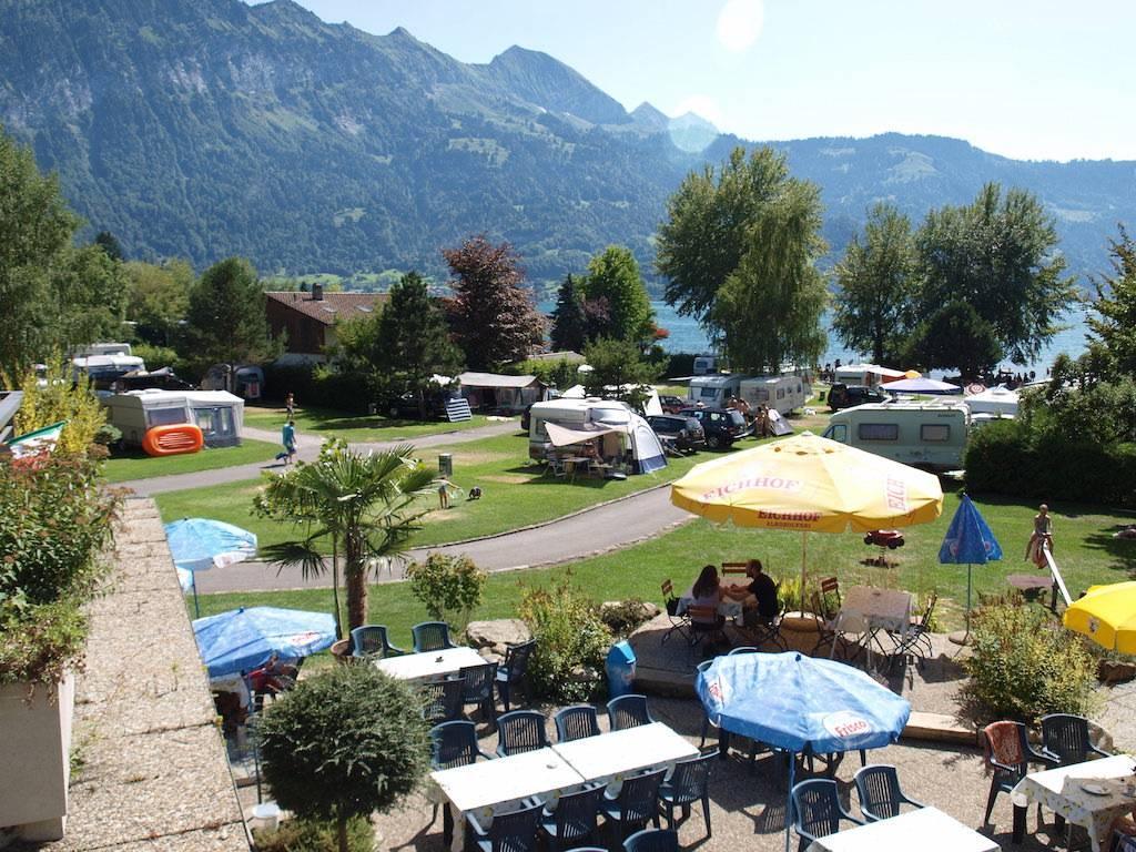 Zicht vanaf het restaurant op ons deel van de camping.