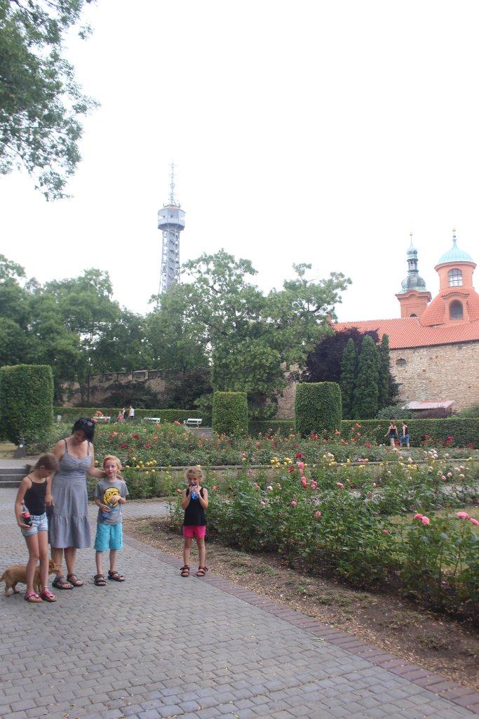 Wandelen in de rozentuin in het Petrin Park.