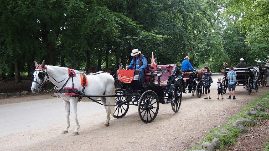 Geen zin om te lopen? Neem de paardenkoets vanaf Bakken.