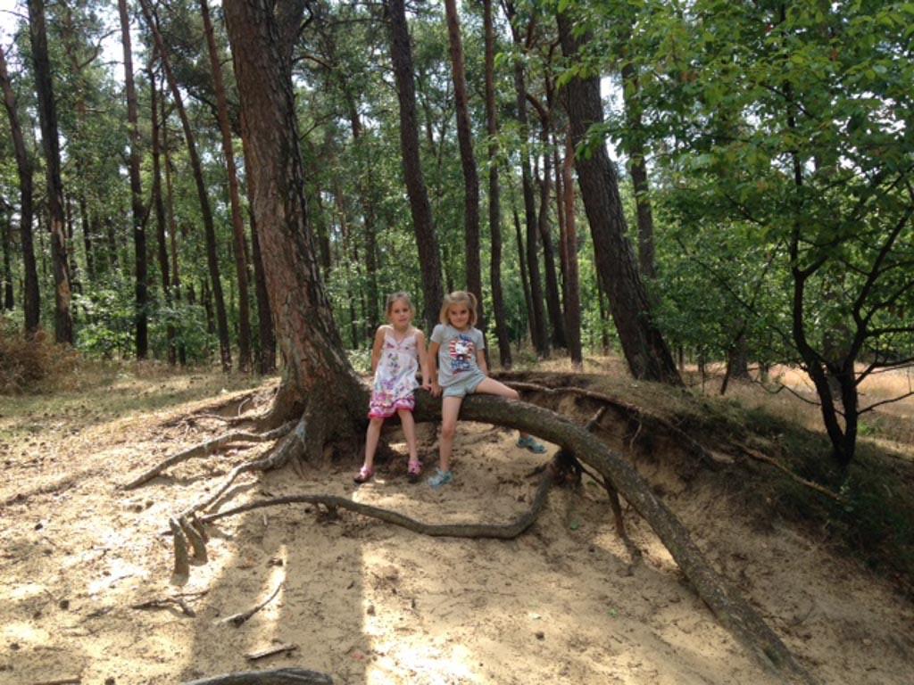 Samen in het bos.