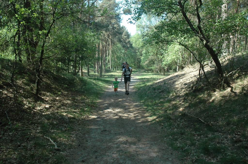 Wandelen in de bossen rondom de camping.