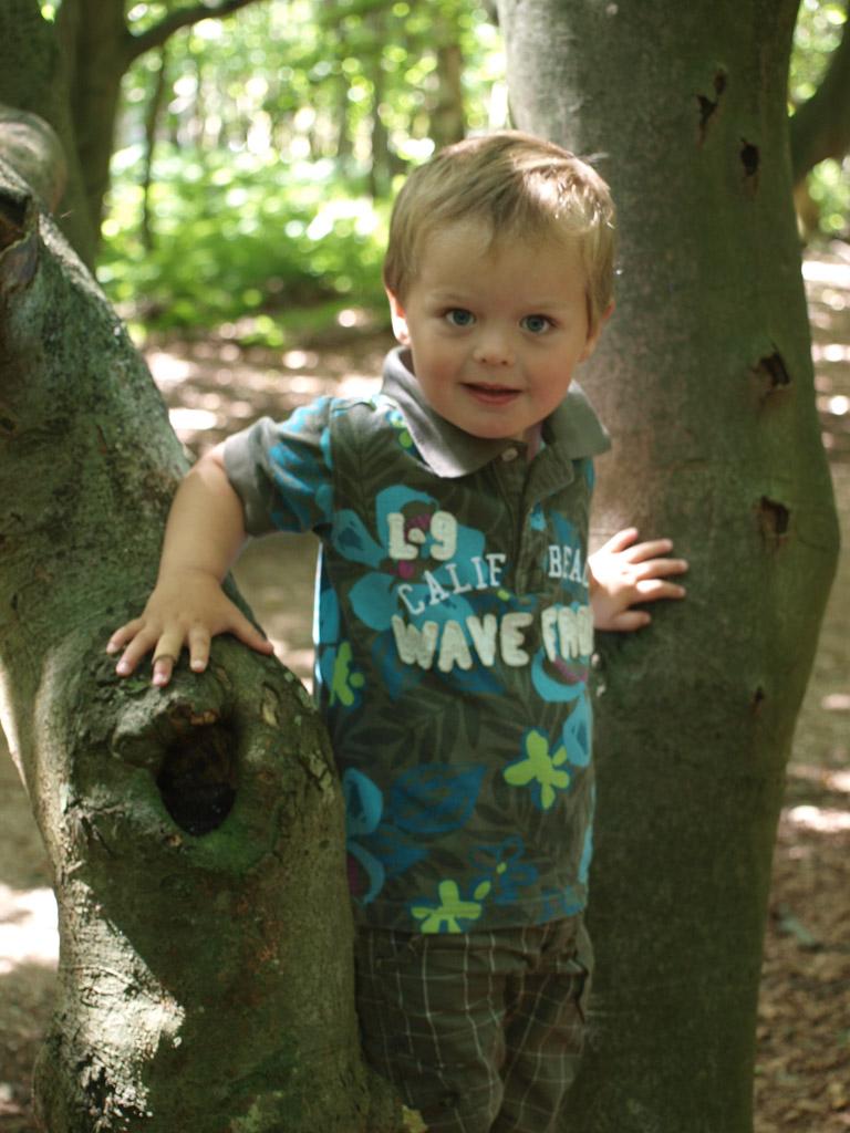 Tussen de boomstammen door klimmen.