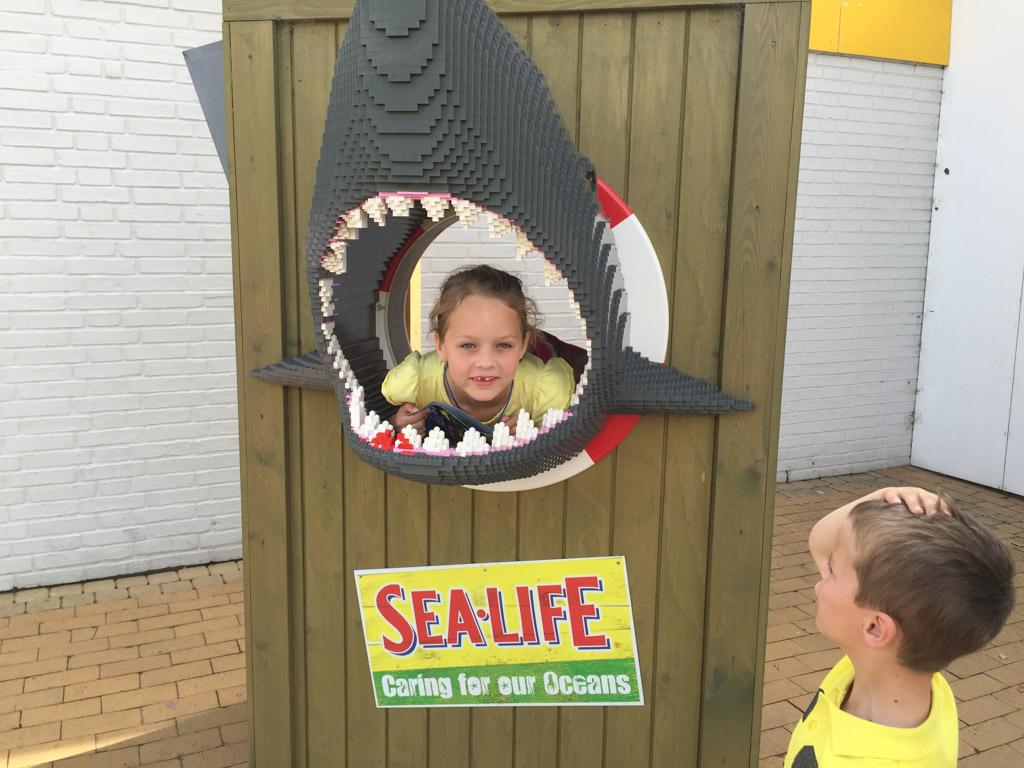 Er is zelfs een aquarium in LEGOLAND. Bij de entree stond een echte haai.