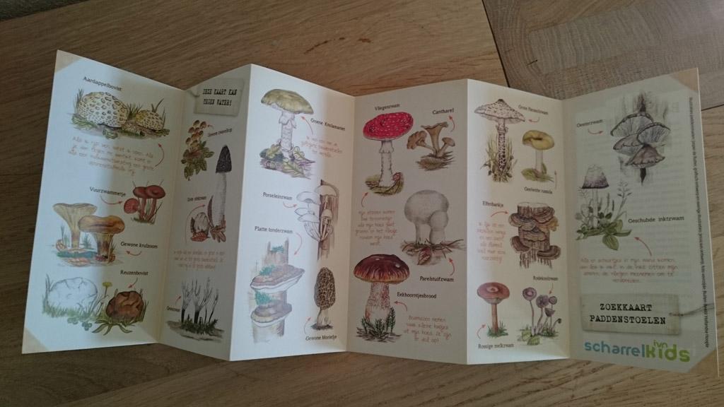 De achterkant van de paddenstoelen zoekkaart.