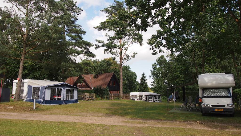 Ook de caravans en campers staan in het bos.