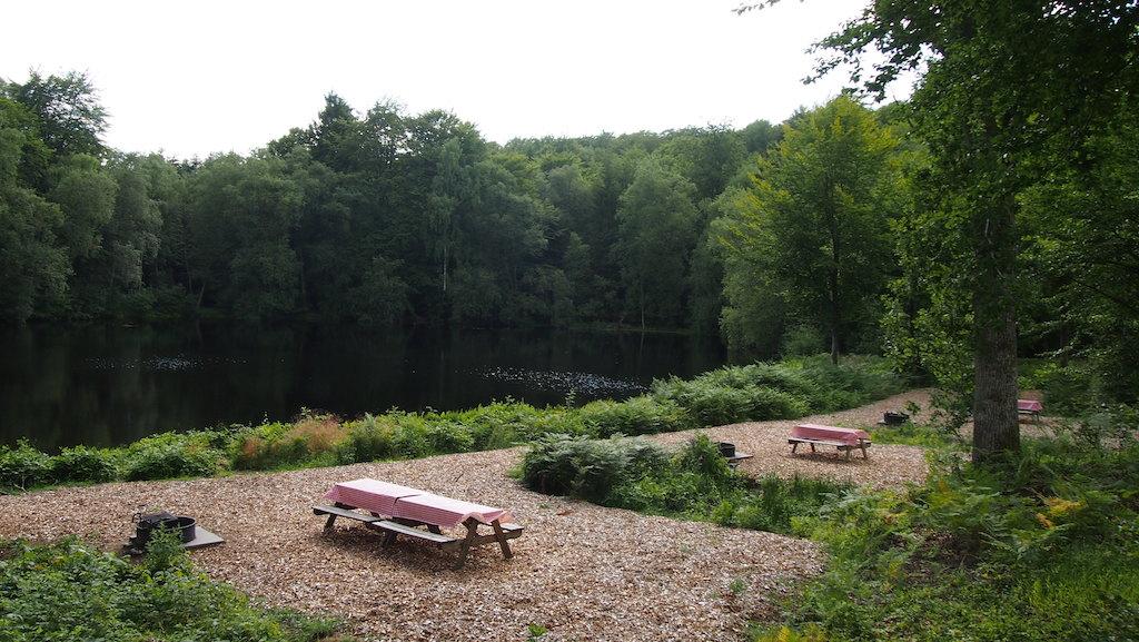 Picknicken en bbq-en aan het meer.