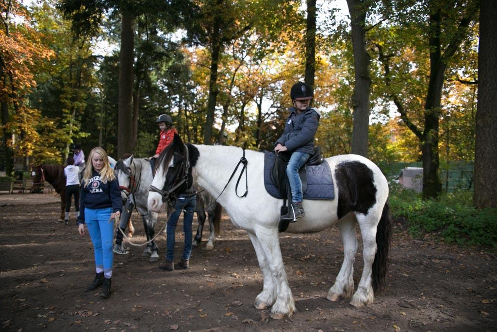 Elin op de grootste pony.